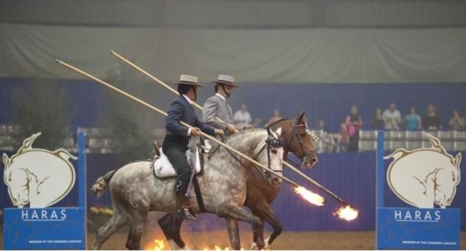 Rider at Haras dos Cavaleiros
