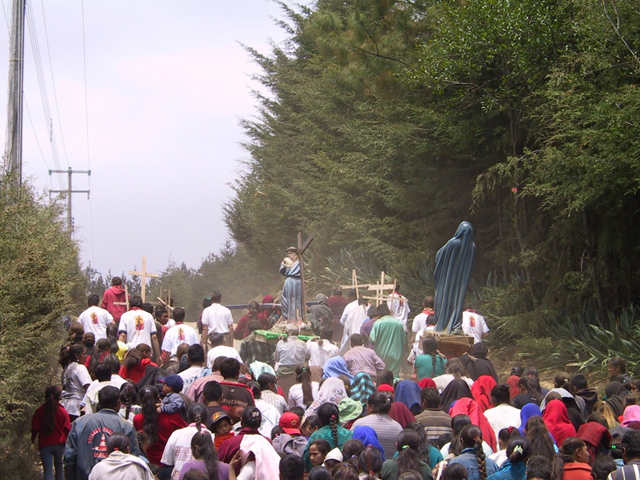 Evangelization missions are a support for the parishes and the dicoesan pastoral programs.