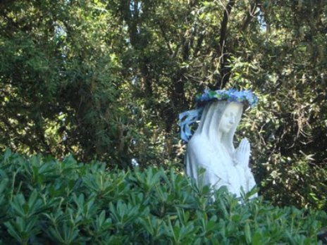 Mary crowned for May