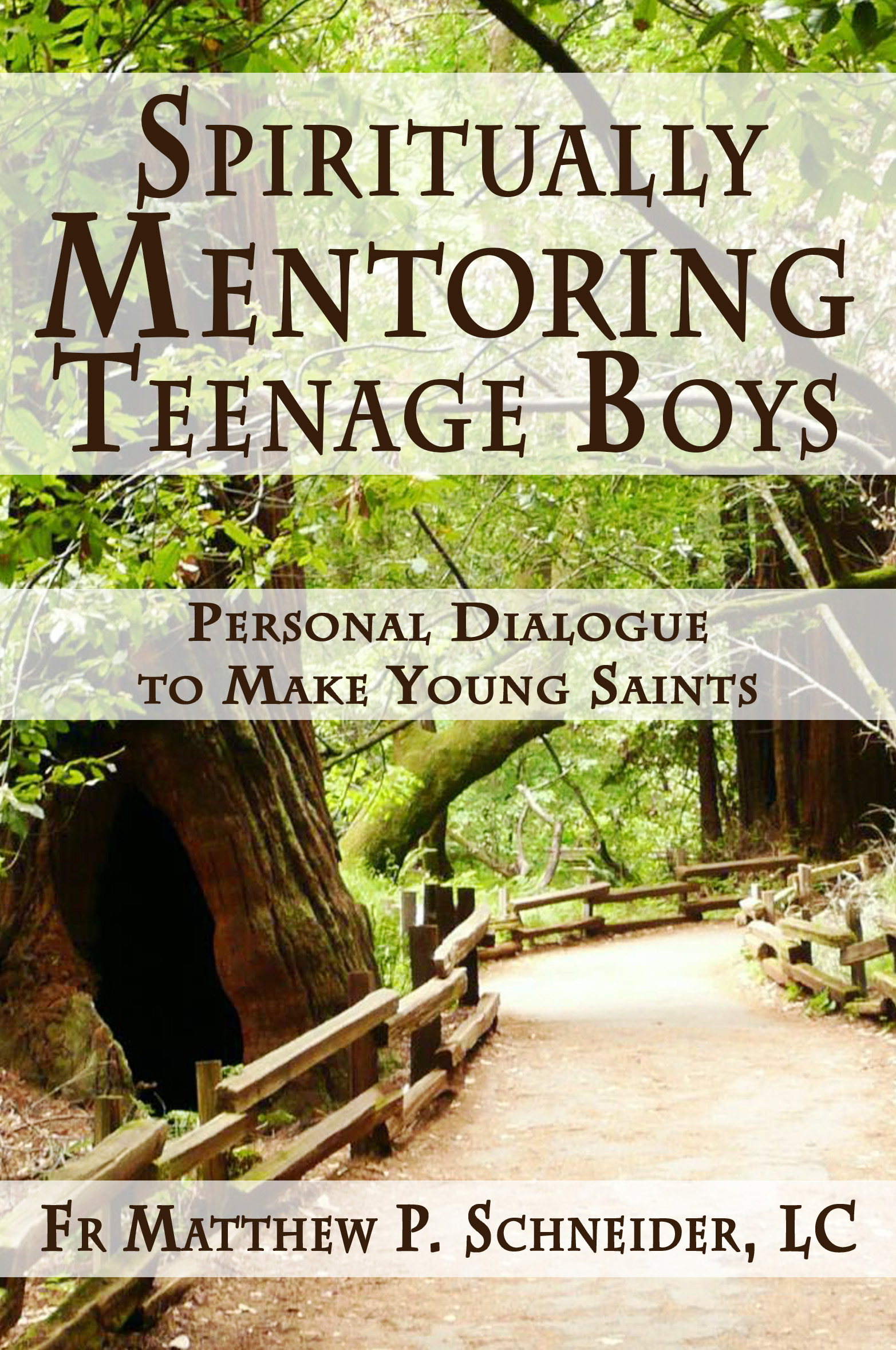 Spiritiually Mentoring Teenage Boys